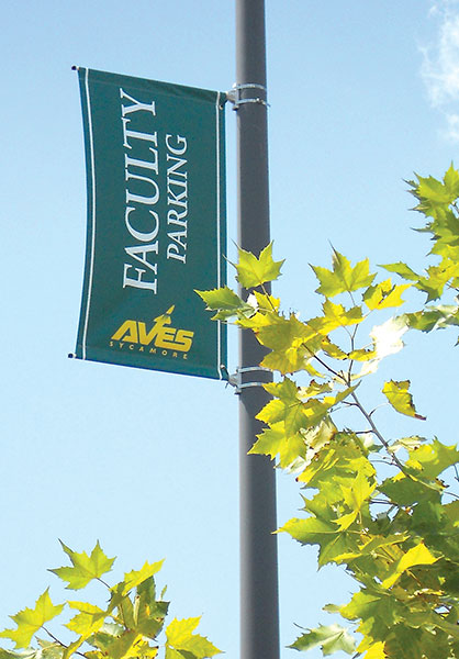 sycamore-pole-banner